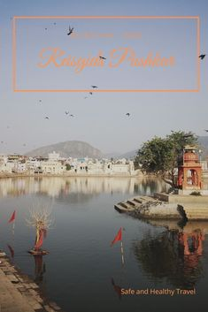 India is overwhelming in a great way and you'll find that in Pushkar too! See this travel guide Pushkar to make you visit to this holy city complete! White Building, Rajasthan India, Beautiful Buildings, Travel Guide, Travel Advise, India Travel, Pilgrim, Small Towns, Travel Pictures