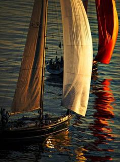 In my next life, I will not fear water & I will live half of each year on a boat sailing the world.