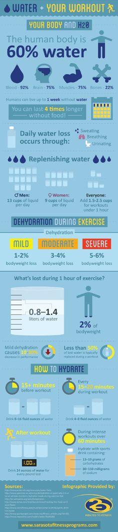 Panduan Lengkap Diet Golongan Darah O (Sehat & Aman)
