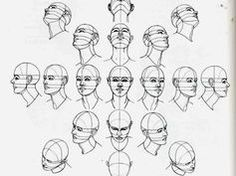 best face proportions for practice - Google Search