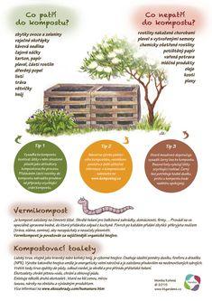 Land Art, Growing Plants, Indoor Plants, Homesteading, Flora, Nature, Gardens, Biology, Garden Ideas