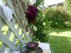 Tea Setting in the garden