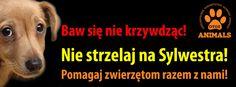 http://inspektoratdebica.files.wordpress.com/2013/12/baner_fb_sylwestra.jpg%3Fw%3D640%26h%3D236