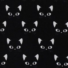 """Résultat de recherche d'images pour """"jersey chat"""""""