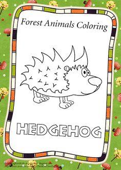 hedgehog coloring