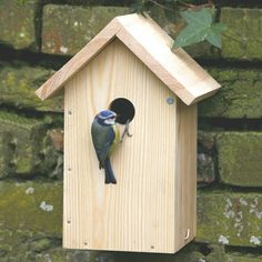 Kit nichoir pour mésanges - Build Your Own Nest Box Bird House Plans Free, Hummingbird House, Homemade Bird Houses, Bird Feeder Plans, Mud House, Wooden Bird Houses, Common Birds, Wood Pallet Furniture, Bird Boxes