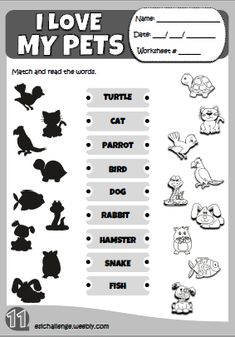 My pets - worksheet 2 Primary English, English Book, English Writing, Learn English, English Activities For Kids, English Lessons For Kids, English Worksheets For Kids, 1st Grade Activities, 1st Grade Worksheets