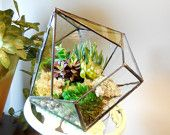 Terrarium, stained glass planter geometric 3D pentahedron, diamond shape plant holder