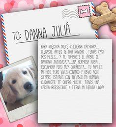 Valentine's Day Note for Danna Juliá from Lilian de Juliá on 3MillionDogs.com