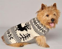 Posh Puppy Boutique is a shop for designer dog clothes and accessories -Reindeer…