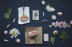 DIY Pressed Flower Prints | Free People Blog #freepeople - need to keep this for spring!