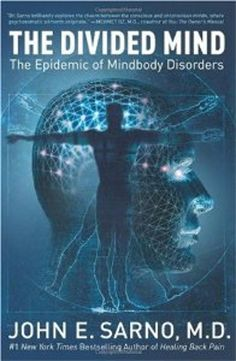 """Cover of """"The Divided Mind: The Epidemic ..."""