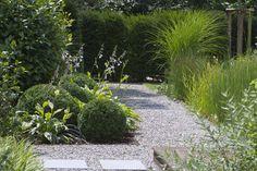 Best Plants For A Drought Tolerant Garden - Useful Garden Ideas and Tips Contemporary Garden Design, Small Garden Design, Landscape Design, Dry Garden, Gravel Garden, Vegetable Garden For Beginners, Garden Architecture, Outdoor Landscaping, Organic Gardening Tips