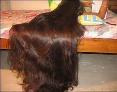 Very long brown hair Thick Hair Bob Haircut, Long Brown Hair, Super Long Hair, Silky Hair, Beautiful Long Hair, Hair Photo, Hair Pictures, Bob Hairstyles, Hair Lengths