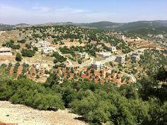 Viajes a Jordania: Viajes a Jordania - Castillo de Ajlun