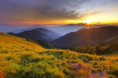 What a view Nature Photography, Asia, Mountains, Sunset, Flowers, Travel, Taiwan, Moon, Stars