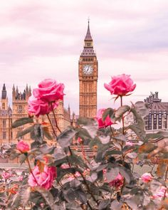 Big Ben – London, United Kingdom – England – United Kingdom / Great Britain – United Kingdom + Pink Roses / Pink Roses rnrnSource by irish_r Big Ben London, Big Beautiful Houses, Beautiful Places, Beautiful Beautiful, Cute Wallpapers, Wallpaper Backgrounds, Backgrounds Girly, Wallpaper Uk, Iphone Wallpaper