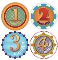 Picky Sticky (month stickers you can put on any onsie...great for milestone photos)