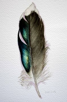 Oh just another beautiful feather...
