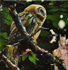 """Night Owl"" par Kelly McNeil"