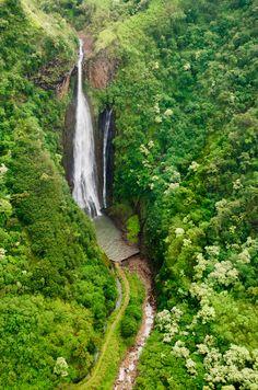"High Quality Stock Photos of ""kauai hawaii"" Latest World News, Kauai Hawaii, Paradise Island, Daily News, The Best, Waterfall, Heaven, Around The Worlds, Country Roads"