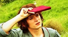 Frodo Baggins i have never seen this picture before. wistful out looking dreaming