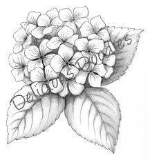 hydrangea tattoo designs - Google Search
