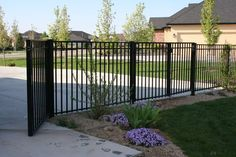 Tall wrought iron fence around house or do wood slat (like the deck)fence with podocarpus tall hedge.