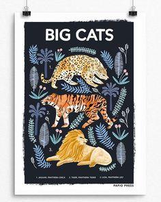 Big Cats Natural History Print by Papio Press