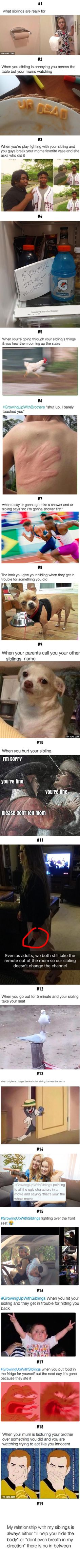 19 Perks Of Having A Sibling is part of Funny - More memes, funny videos and pics on Really Funny Memes, Stupid Funny Memes, Funny Relatable Memes, Funny Posts, The Funny, Funny Stuff, Funny Things, Funny Kids, Funny Quotes