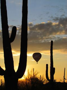 Tucson, Arizona - hot air balloon