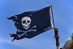 Image result for skull and crossbones flag
