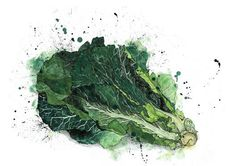 Emma Dibben again - see what I mean - a kind of slightly manic Steadmanesque cabbage. I love it.
