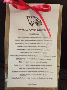 Softball Players Survival Kit | # Love Softball ...