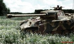 Panther from 5th SS Wiking Poland, May 1944. These brave panzer soldiers would take a grim toll on Soviet armor.