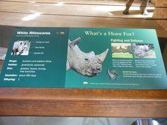 Zoo Signage Bronx zoo zoo center white