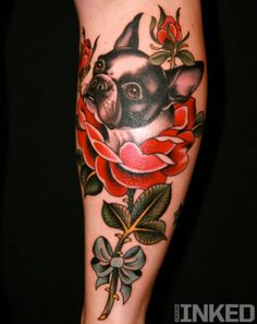 Adorable Boston Terrier in a flower.. Tattoo by Zack Spurlock