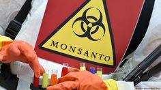 Potenciais efeitos da união Bayer-Monsanto | Ciência e Saúde | DW.COM | 15.09.2016