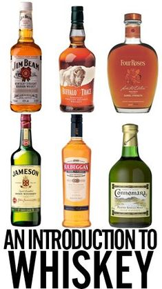 Whiskey broken down by grain, country or origin, aging, etc. Whiskey Or Whisky, Whiskey Brands, Whiskey Girl, Good Whiskey, Scotch Whiskey, Jameson Irish Whiskey, Bourbon Cocktails, Wheated Bourbon, Home Brewing Beer