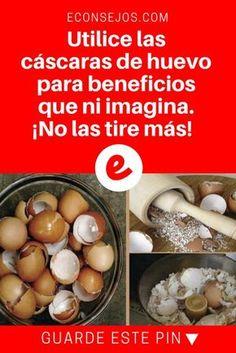 Cascaras de huevo   Utilice las cáscaras de huevo para beneficios que ni imagina. ¡No las tire más!   ¿Sabe qué cantidad de beneficios te aporta la cáscara de huevo? ¡Mire aquí!