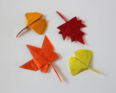 Autumn leaves | Flickr - Photo Sharing!  Love ginko leaves.  From Won Seon Seo flickr site.