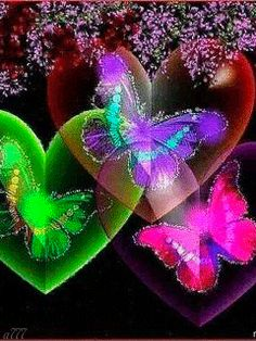 Colorful butterflys n colorful hearts Butterfly Kisses, Butterfly Flowers, Beautiful Butterflies, Butterfly Live, Butterfly Pictures, Butterfly Wallpaper, Beautiful Gif, Glitter Graphics, Animation