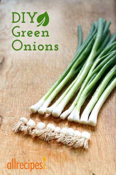 All you need is a starter bunch of green onions, a jar, and fresh water.