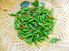 Cooking Is Easy: Lemon Pickle/Vella Naranga Achar (Kerala Style) Lime Pickles, Lemon Pickle, Kerala Recipes, Kerala Food, Homemade Pickles, Green Beans, Vegetables, Cooking, Easy