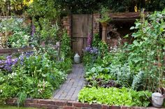 Harpur Garden Images Ltd :: 07mh387 The Old Gate . Gold Medal Best Courtyard Garden brick wall shelter roof raised bed of vegetables broad beans carrots lettuce Digitalis gate metal watering can obelisk Lathyrus sweet peas Design: Adam Woolcott and Jonathan Swift, AW Gardening Services RHS Chelsea Flower Show 2007 UK Marcus Harpur