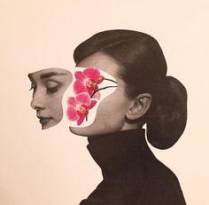 #aubreyhepburn#orchid#adamhale#dailysplice