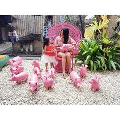 #piggarden #piggy