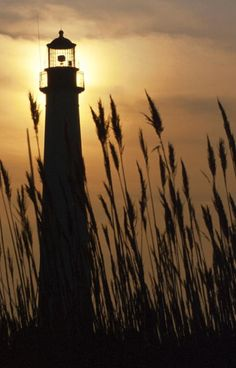 lighthouse, phare, Cape May
