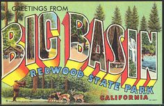 Postcard of Redwood State Park California