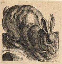 Wenceslas_Hollar_-_Crouching_hare.jpg (2072×2144)